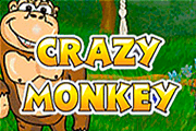Crazy Monkey slot game free